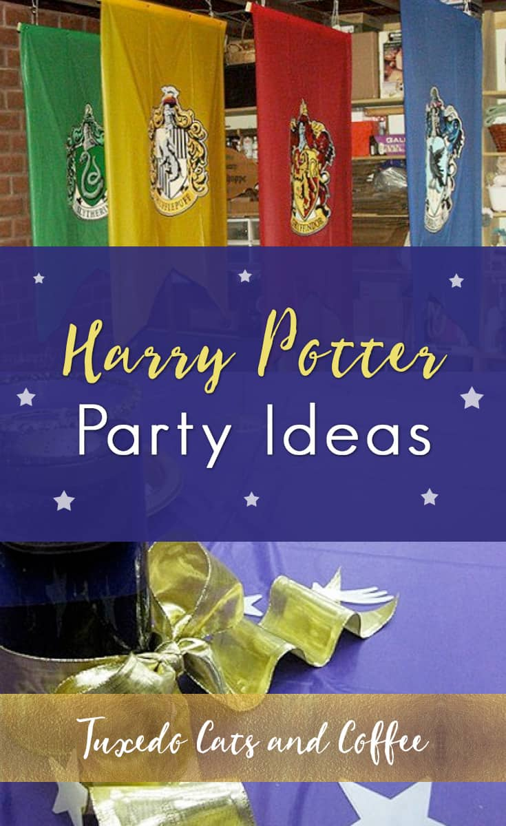 We held this Harry Potter party as an awards ceremony and end-of-the-year banquet for a group at a high school. This post will give you Harry Potter party ideas and show you how to hold your own Harry Potter birthday party and make all the decorations you need to transform your house or a banquet hall or any large room into the Hogwarts great hall, complete with an extra guide showing you how to make Harry Potter recipes like Honeydukes's sweets and other baked goods.