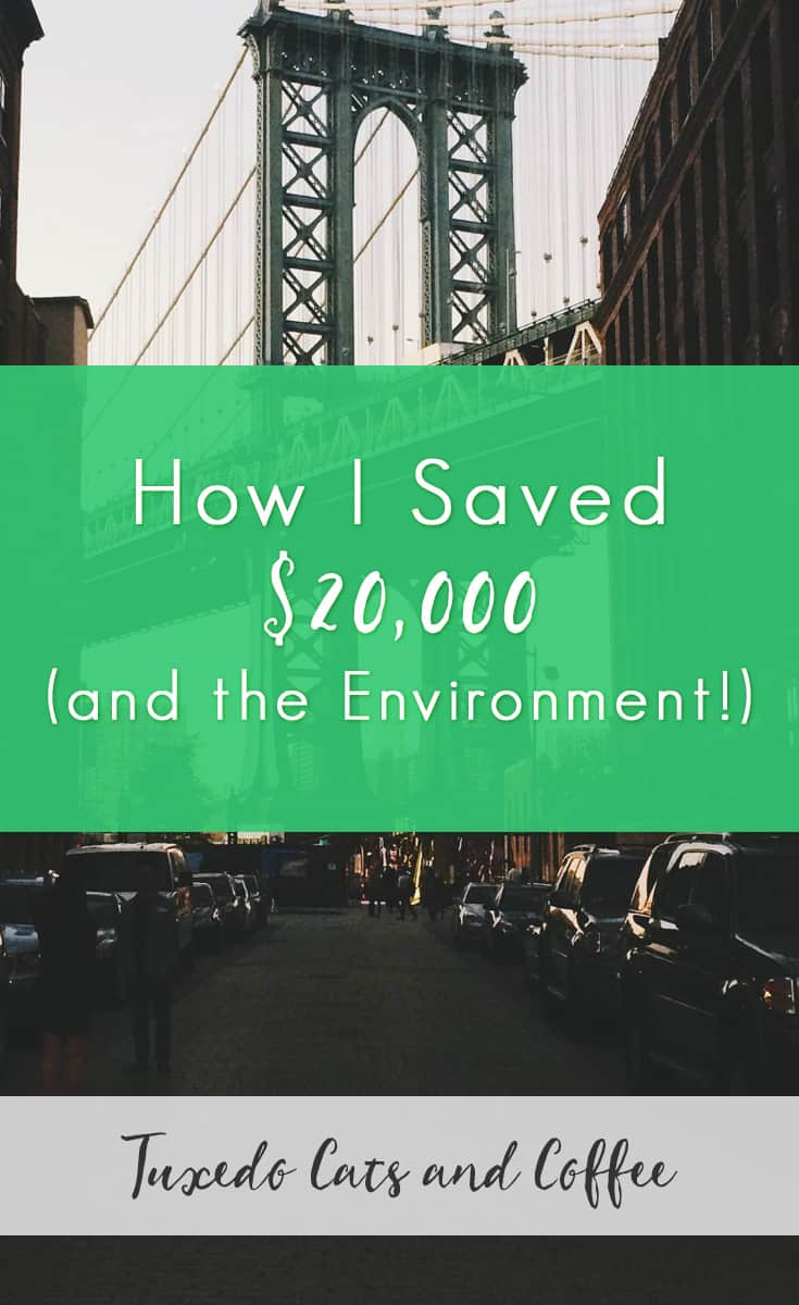 What would you do if you had an extra $20,000 lying around? Or what if you didn't have to spend that money in the first place? It would be pretty nice, huh? Here's how I saved $20,000 (and the environment!).