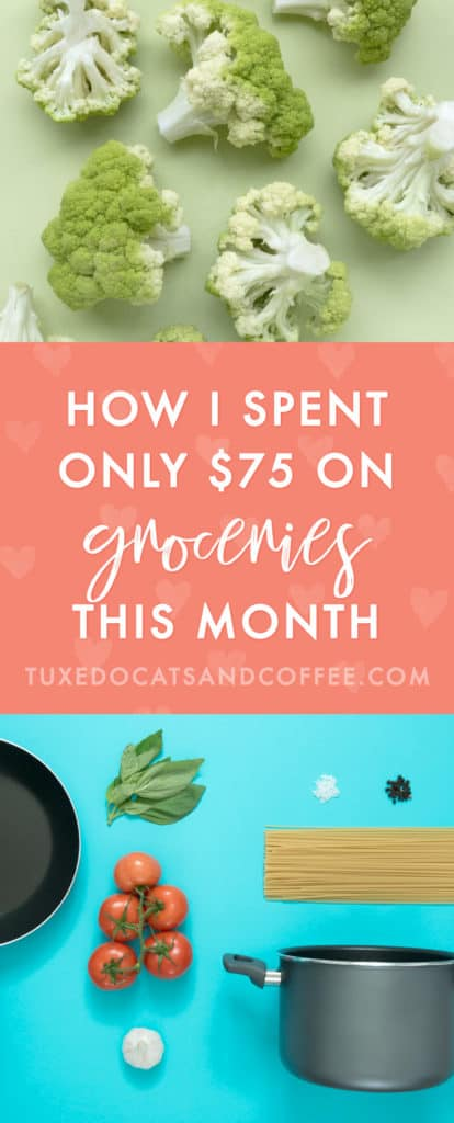 This month I really wanted to go into super-saver mode and temporarily cut my expenses as much as possible. Earlier this year I had a lot of extra expenses like moving, a deposit and pet fee for my new apartment, a new computer, etc, so I've been a bit over budget all year because of those extra things. So this month, I decided to buckle down and spend way less than normal to help offset that. Here's how I stuck to a $75 grocery budget this month.