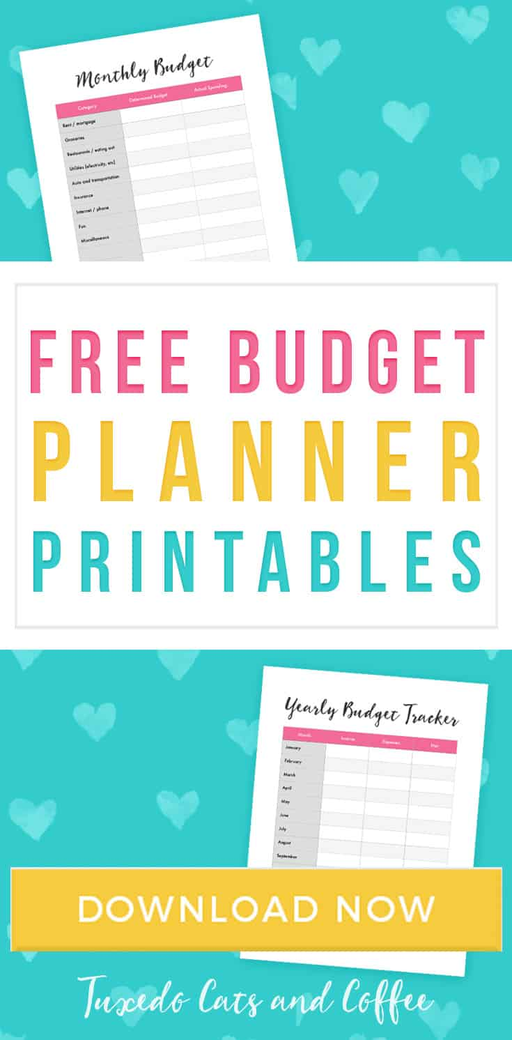 When you're first trying to create a budget, it can be helpful to see what someone else's budget looks like and what categories they use. That's why I created these free budgeting printables to help you create a budget!