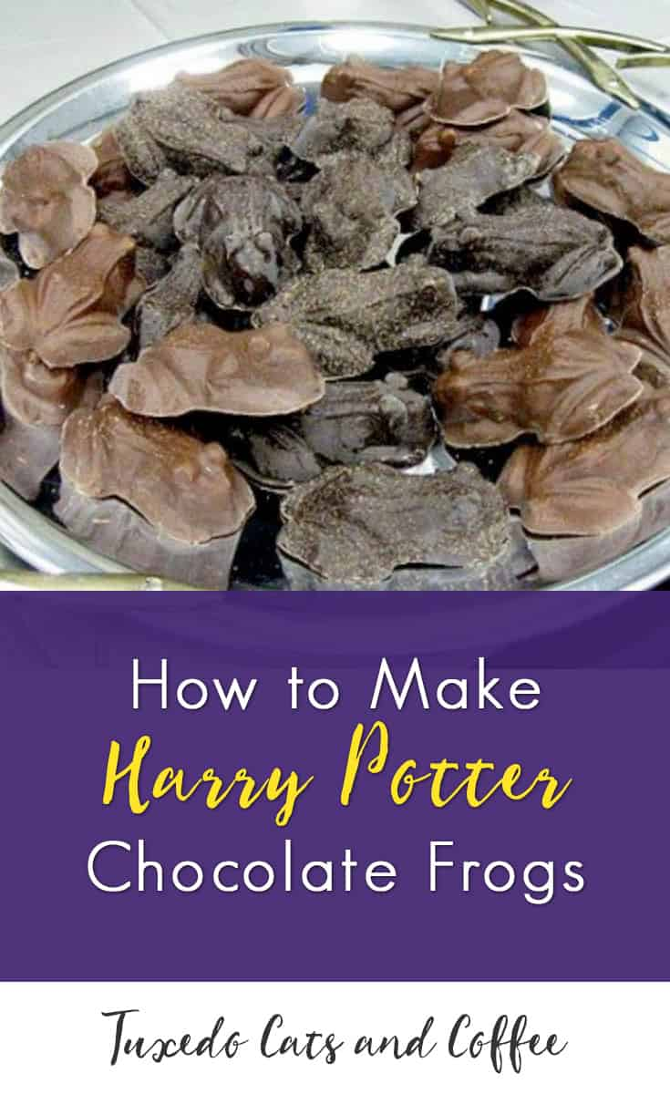 Chocolate frogs are a classic Harry Potter candy. You can buy official Harry Potter chocolate frogs which come with a wizard card, but they are expensive. If you have the time, you can make your own just by melting chocolate and using a frog candy mold.