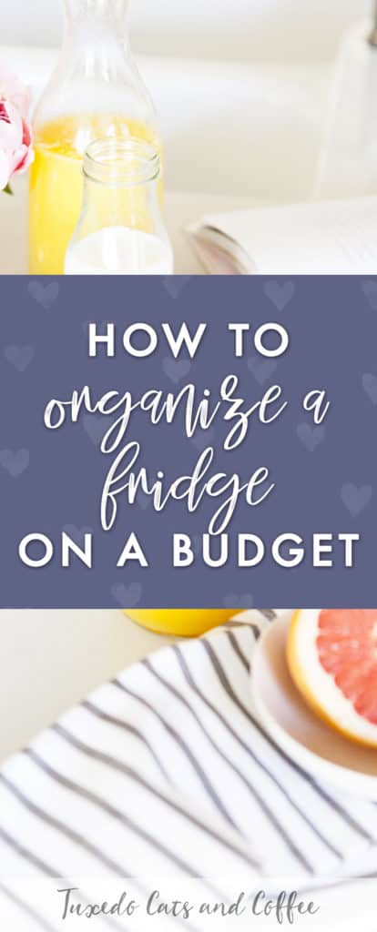 I recently wrote another post about how to organize your home on a budget, and in this post I'm specifically talking about how to organize your fridge for under $10.