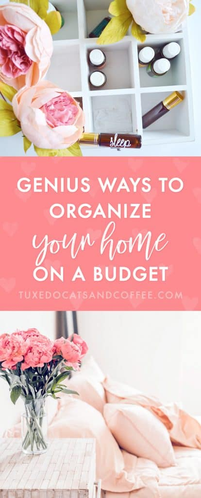 When I moved into a new apartment a couple years ago, I decided to get organized! So I went out to the Dollar Tree and bought a bunch of inexpensive little bins and things and organized basically my whole apartment. Here's how to organize your home on a budget.
