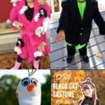 20+ Homemade Halloween Costumes