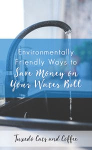 Environmentally Friendly Ways To Save Money on Your Water Bill