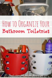 12+ Dollar Store Organizing Ideas