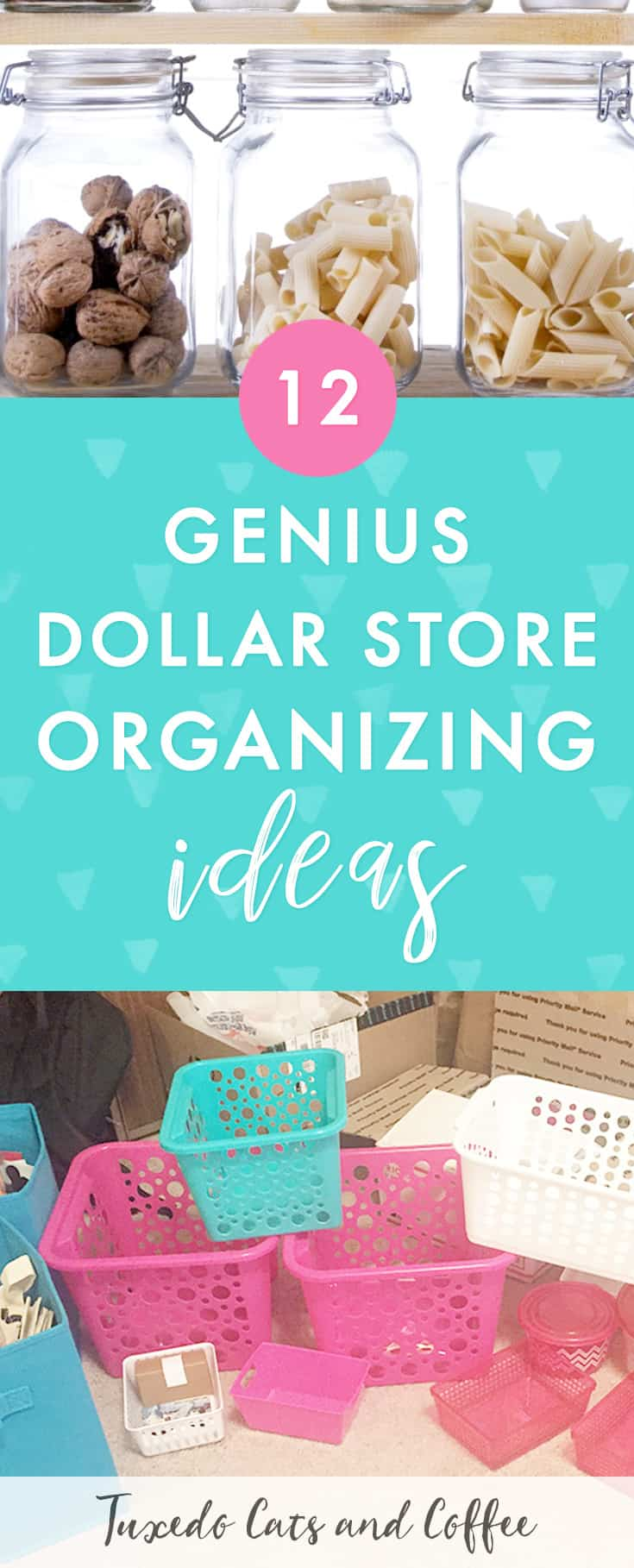 12+ Dollar Store Organizing Ideas