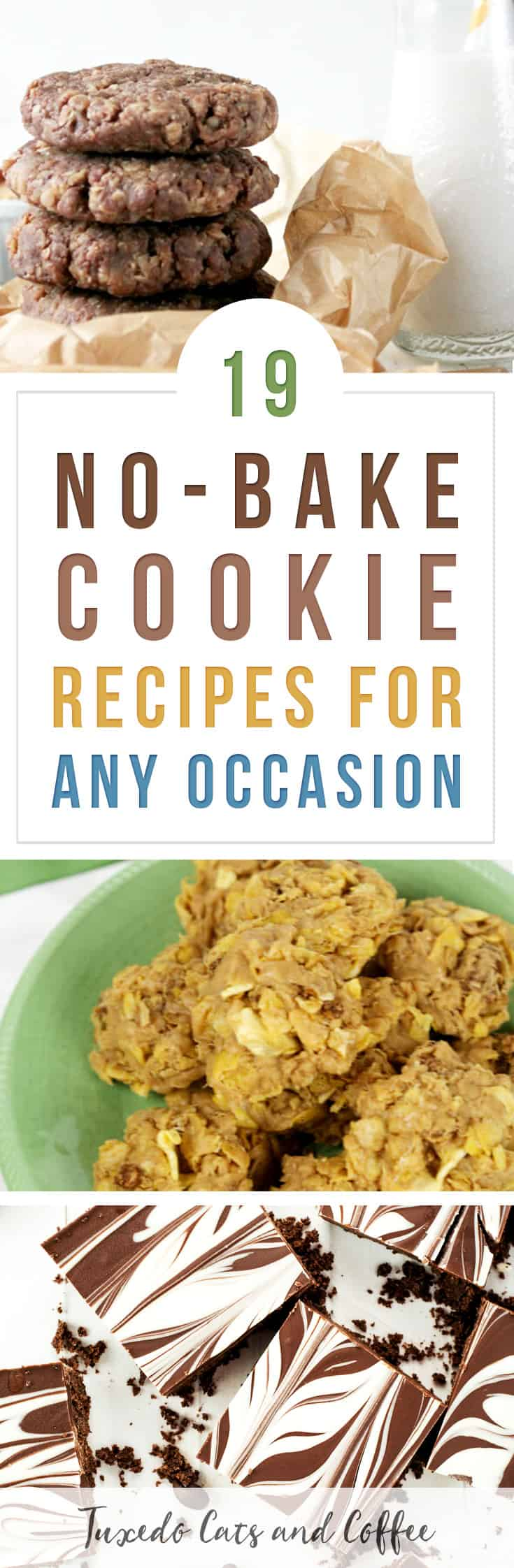 Need a quick and easy cookie recipe that doesn't require baking? Here are 19 no-bake cookie recipes for any occasion, including Christmas cookie exchanges, potlucks, and more! Many of these cookie recipes include peanut butter or oats since that makes a good base for a no-bake cookie. :)