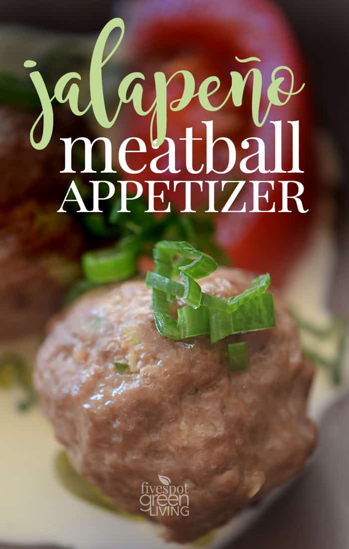 10 Slow Cooker Meatball Recipes Tuxedo Cats And Coffee