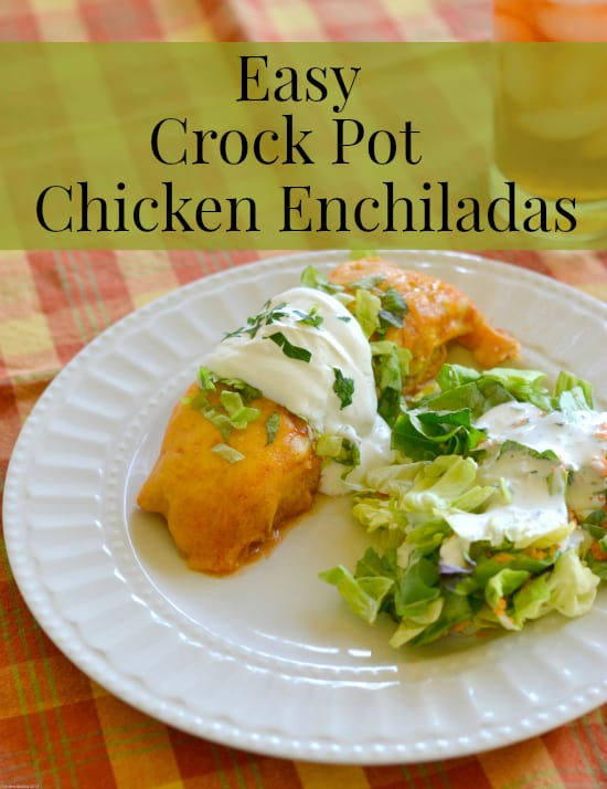 A wonderful and easy Chicken Crock Pot Recipe that tastes great and has just 3 Points. This Slow Cooker Beer Chicken also makes a great Weight Watchers Super Bowl Recipe idea.